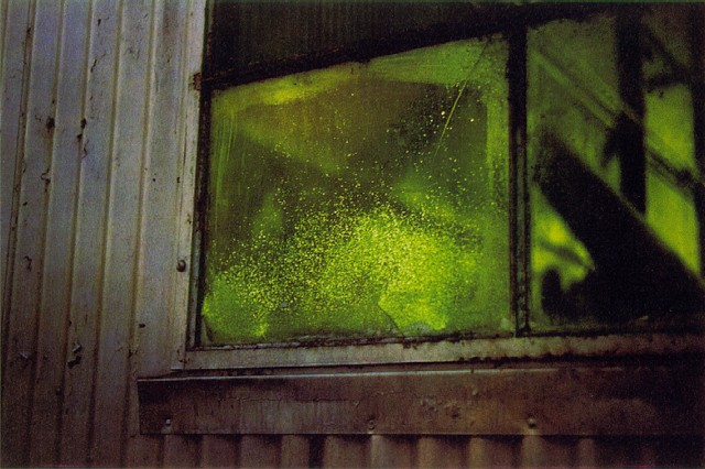 eggleston_green_window